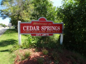 Cedar Springs Homes For Sale